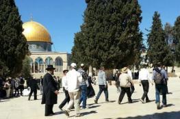 """اكثر من """" 100 """" مستوطن اقتحموا المسجد الاقصى المبارك"""