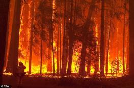 أميركا تعلن انها فقدت السيطرة على أكبر حريق غابات في تاريخها