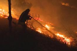 اتهام فلسطينيين باحراق عشرات الدونمات قرب قاعدة عسكرية بنابلس