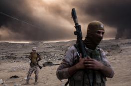 صحيفة بريطانية : تنظيم الدولة يعود للعمل في شمال العراق.. والعام المقبل سيكون الأسوأ