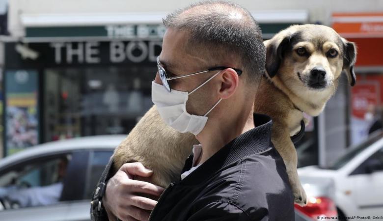 الاردن يعلن تسجيل اول اصابة لكلب بفيروس كورونا