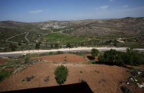 محيط قرية اللبن الشرقية