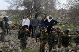 مستوطنون يسرقون محاصيل المزارعين في يطا