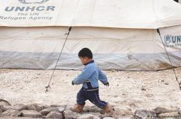 افتتاح اكبر مشروع للطاقة الشمسية للاجئيين في مخيم الزعتري