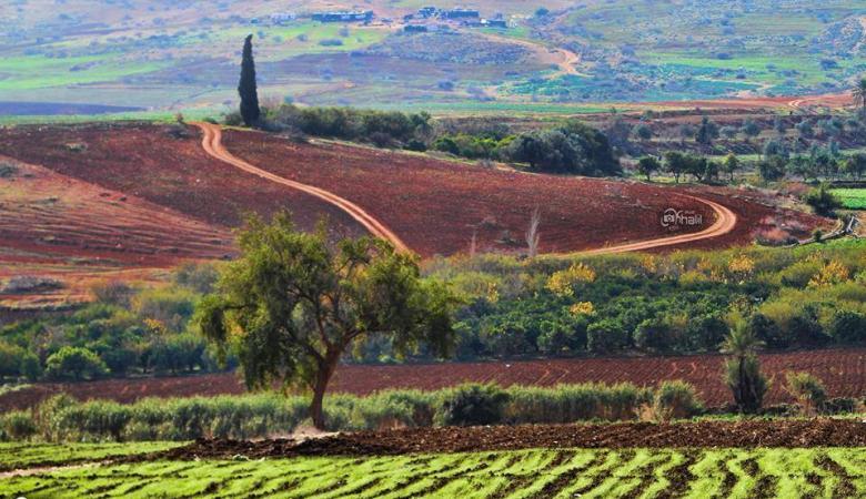 """""""فتح"""" تدعو الحكومة لتمليك الأراضي في الأغوار للمواطنين"""