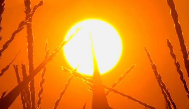 حالة الطقس : أجواء جافة وحارقة ومغبرة