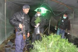 الشرطة تضبط مخدارت بكلفة 60 مليون شيكل
