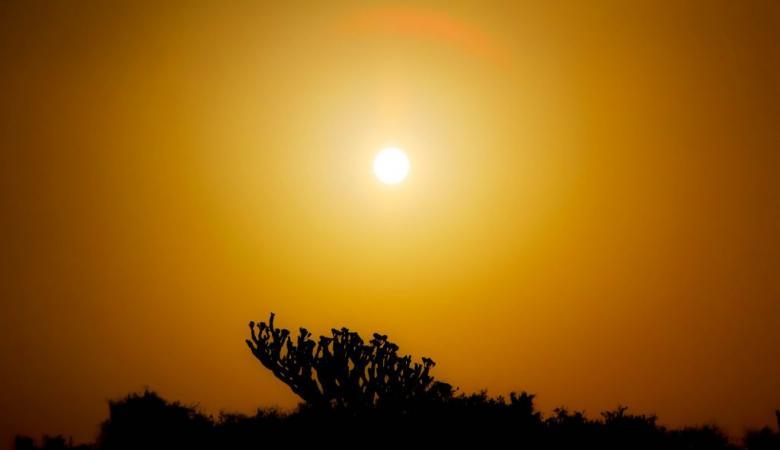 حالة الطقس : أجواء حارة وارتفاع ملحوظ على درجات الحرارة
