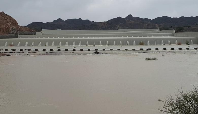 سدود في الإمارات تحصد أكبر كمية مياه منذ 38 عاماً