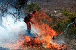 مستوطنون يحرقون أشجار زيتون قرب حاجز حوارة جنوب نابلس