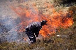مستوطنون يحرقون اراضي حوارة جنوب نابلس