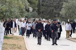 جماعات الهيكل تدعو المستوطنين لاقتحامات جماعية للأقصى