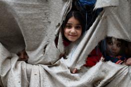 """""""الأونروا"""" توزع 896 خروفا على 2,688 عائلة لاجئة في غزة"""