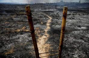 الطائرات الحارقة تجعل حقول المستوطنات المحيطة بغزة الى رماد