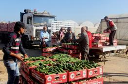 تجار غزة يعانون: مبيعاتنا انخفضت في رمضان 75%