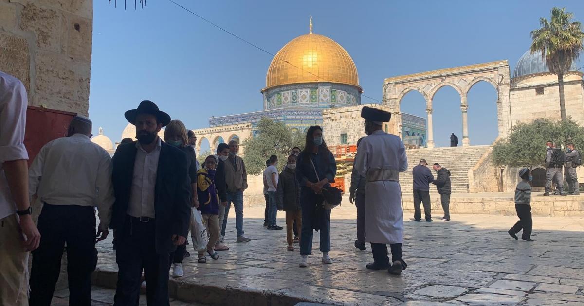 أكثر من 300 مستوطن اقتحموا المسجد الاقصى المبارك