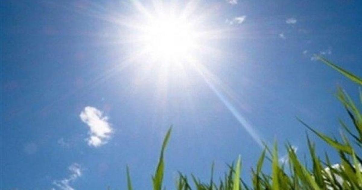 حالة الطقس: أجواء حارة نسبيا