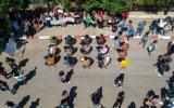 الدراسة في الجامعات الفلسطينية