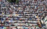 مجلس الافتاء الاعلى والصلاة في الاقصى