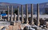المستوطنين في سبسطية