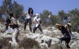 هجمات للمستوطنين في قلقيلية