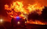 حرائق الغابات في اميركا