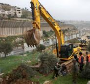 جرافات الاحتلال تدمر أكثر من 500 دونم للمواطنين جنوب نابلس