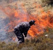 المستوطنون يشعلون النار في اراضي الفلسطينيين