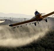 رش اراضي الفلسطينيين بالمبيدات السامة