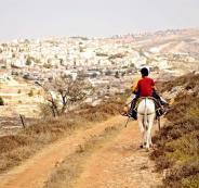 مصادرة اراضي الفلسطينيين في الاغوار