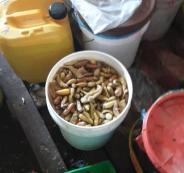 اتلاف طن من المخللات في نابلس