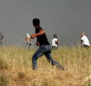 هجمات المستوطنين في موسم قطف الزيتون