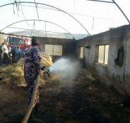 نفوق 5000 طير دجاج بحريق في مزرعة بقرية رابا شرق جنين