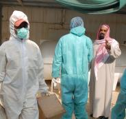 السعودية وانفلونزا الطيور