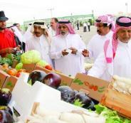 قطر والسلع الاردنية