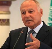أبو الغيط يؤكد أهمية التمسك بحل الدولتين