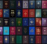 هذا ما يعنيه لون جواز سفرك