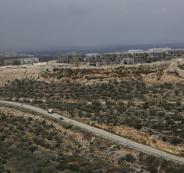 المنسق ومشاريع المنامة
