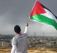 وظائف في فلسطين