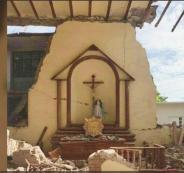 وحده نجا في زلزال المكسيك! صورة