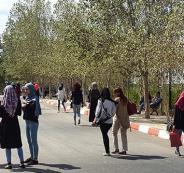 الملكية الفكرية في الجامعات الفلسطينية