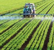فلسطين وموريتانيا والزراعة