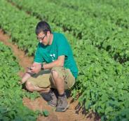 المستوطنون المزارعون يطالبون بالسماح لعمال غزة بالعمل في إسرائيل
