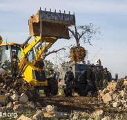 اسرائيل واشجار الزيتون في بيت لحم