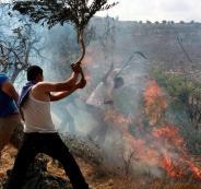 مستوطنون يشعلون النيران في  اراضي المواطنين بحوارة