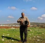 التصحر في الاراضي الفلسطينية