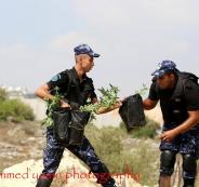 ضبط اشتال مخدرات في بلعين