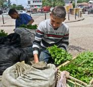 ظاهرة تشغيل الاطفال في فلسطين