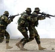 السنغال وزامبيا
