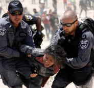 نكبة فلسطين 71